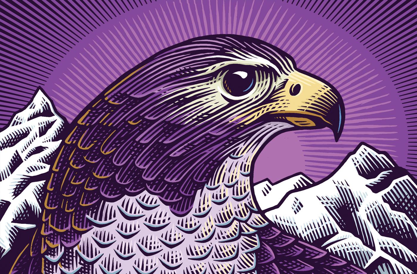 beasts_falcon