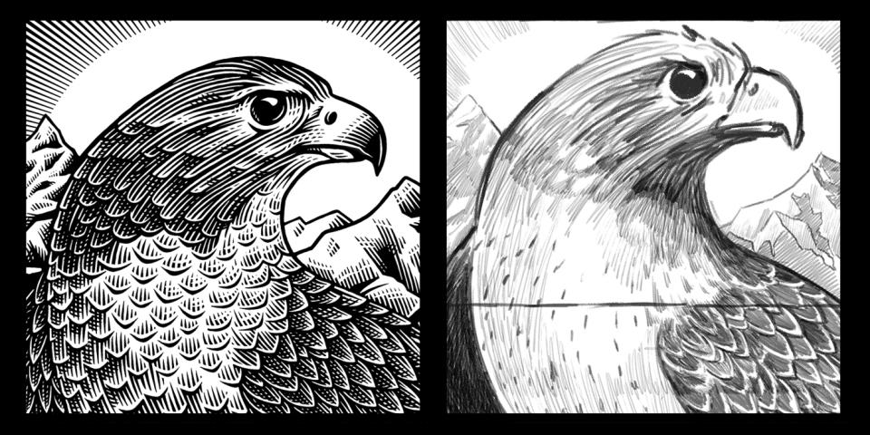 beasts_falcon_sketch