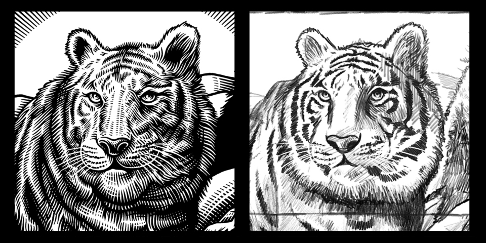 beasts_tiger_sketch